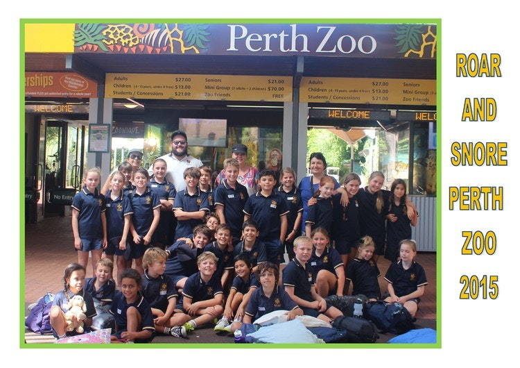 zoo-camp-photo-newsletter.jpg