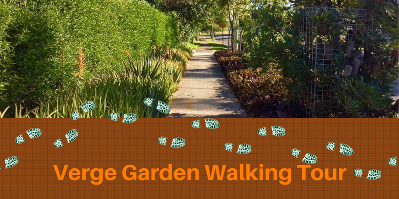 walk-tour-maylands.png