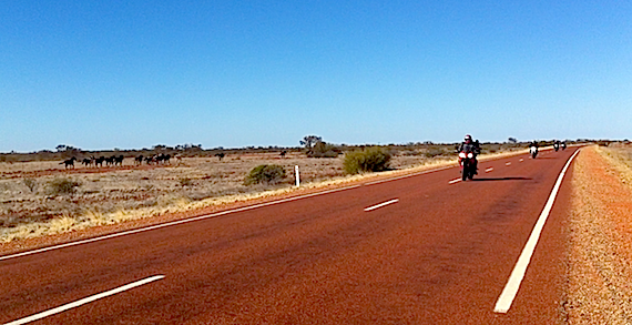 Black Dog Riders on the Road to the Red Centre 2012