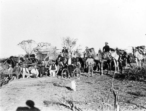Posed photo from the 1890's showing men and their various forms of transport to W.A.'s eastern gold fields.