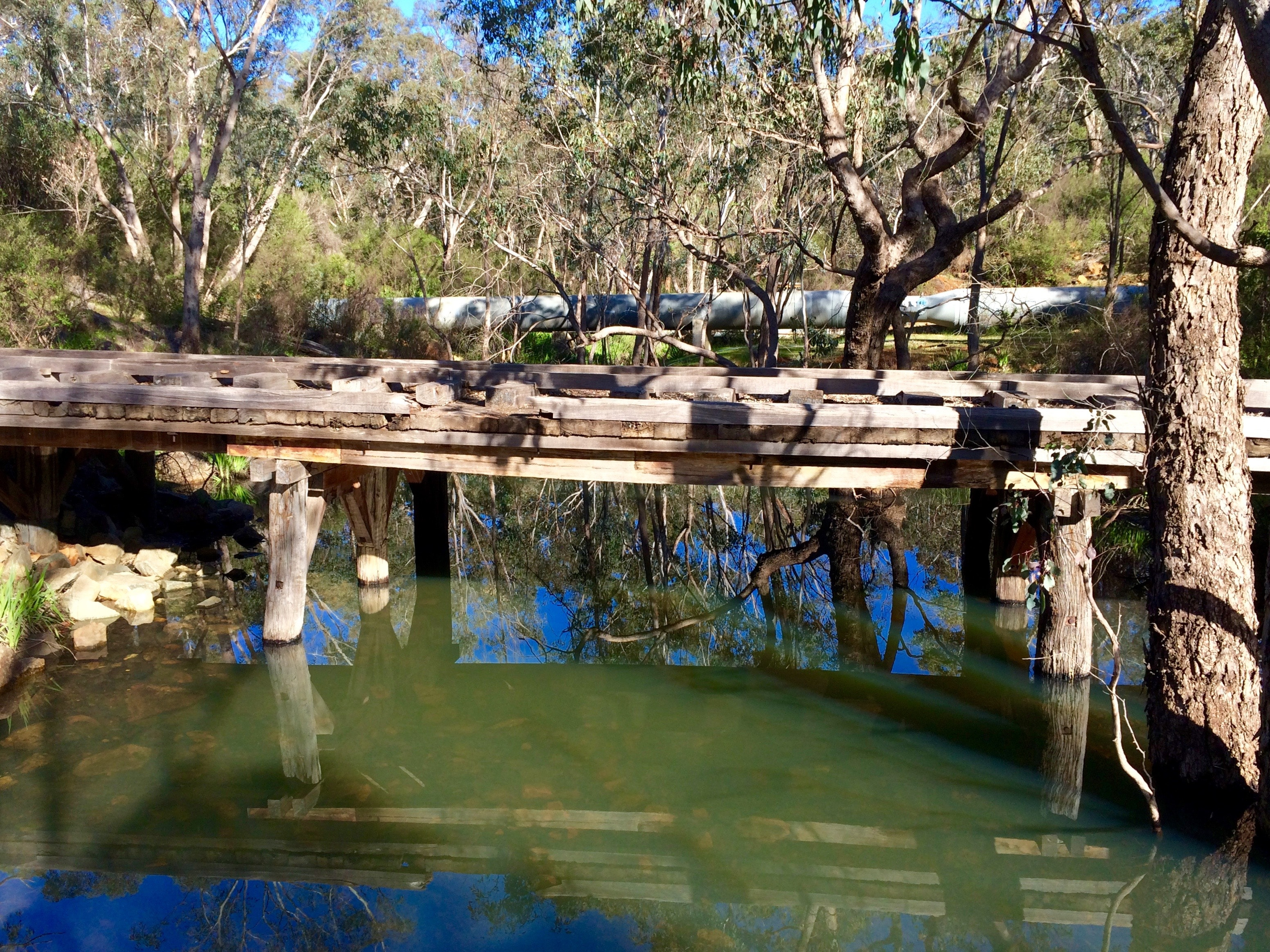 Oldest all-wooden bridge in Australia (Mason & Bird)