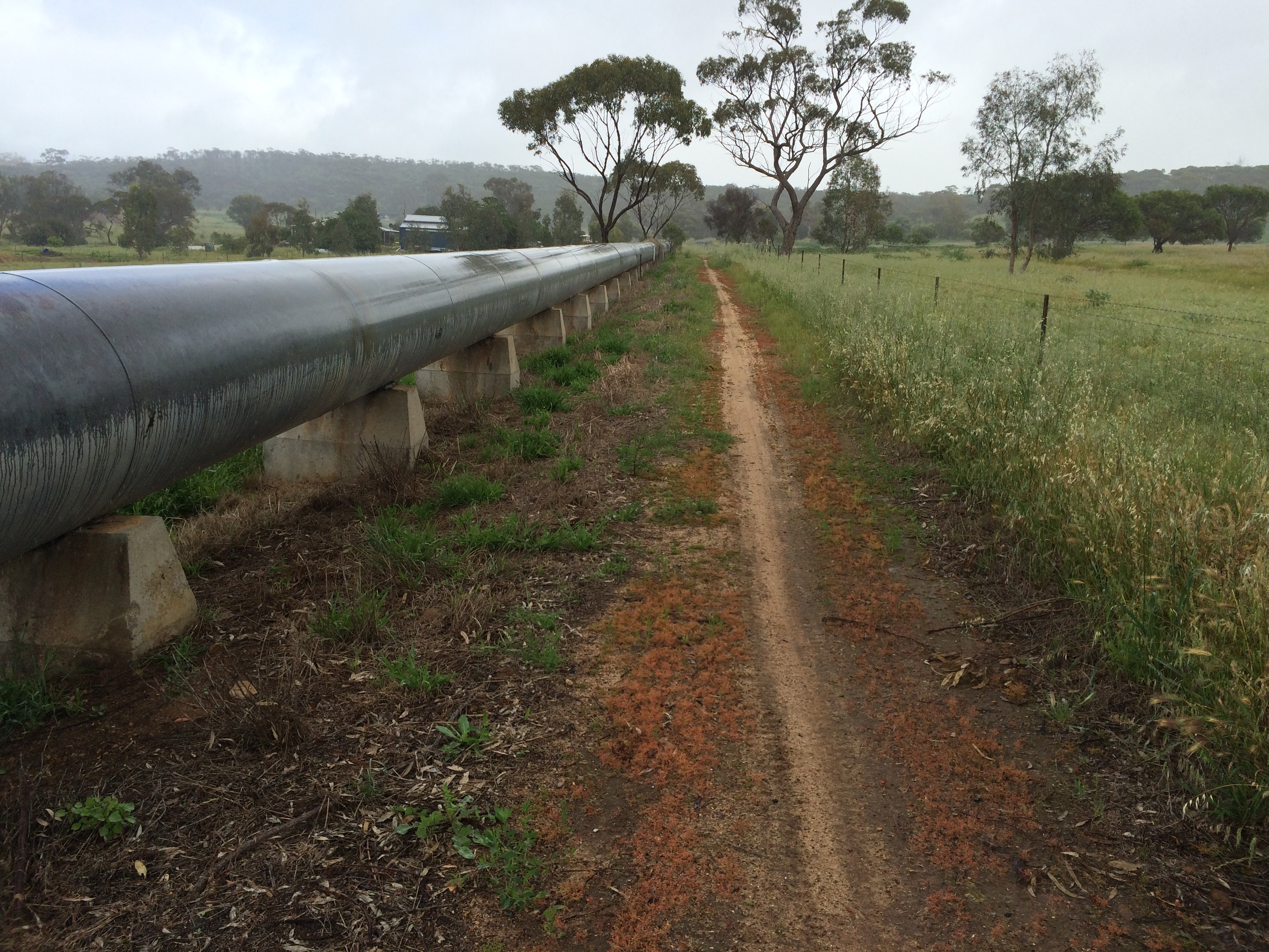 Pipeline and trail near Northam