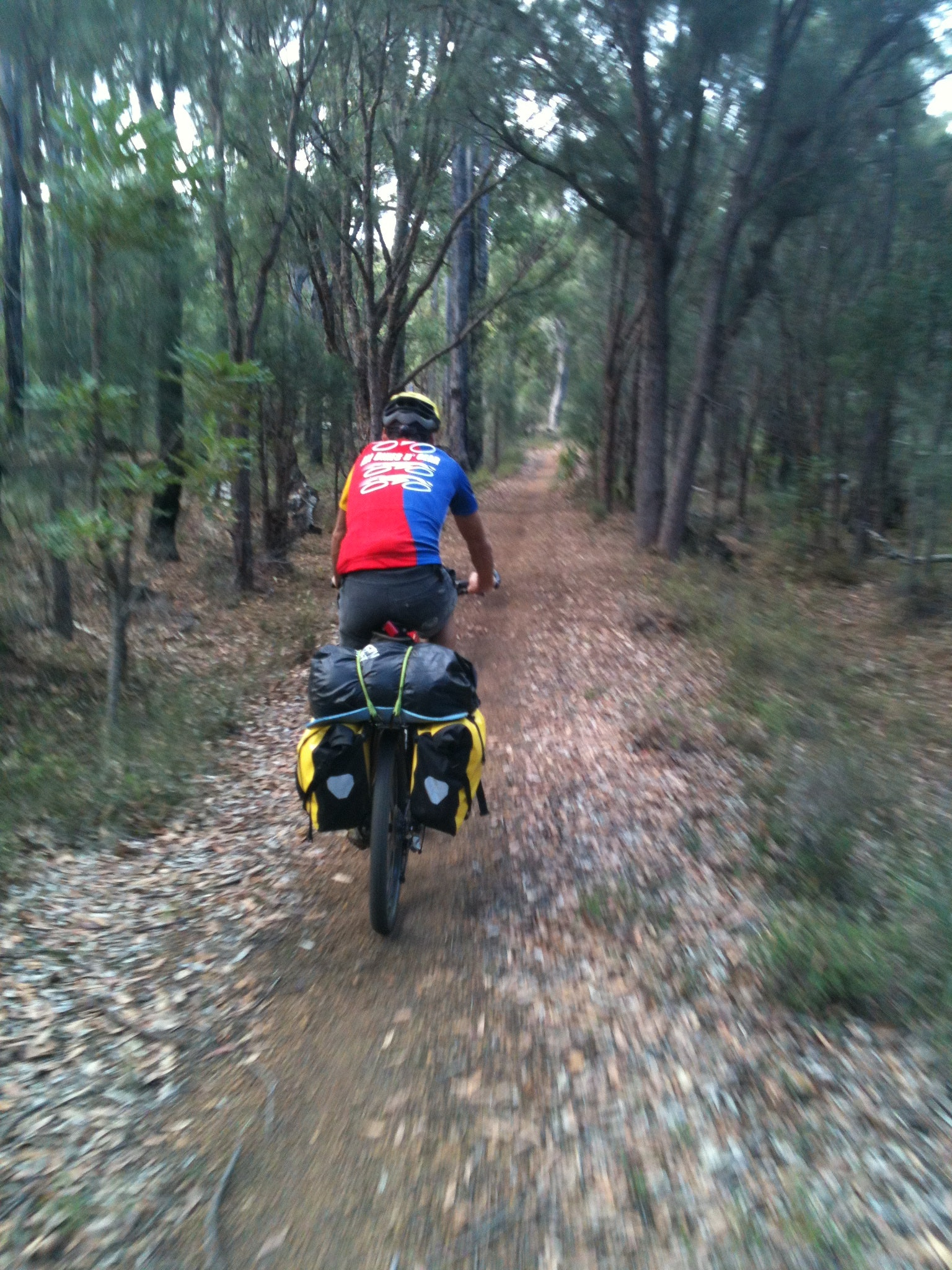 Riding the form near Balmoral