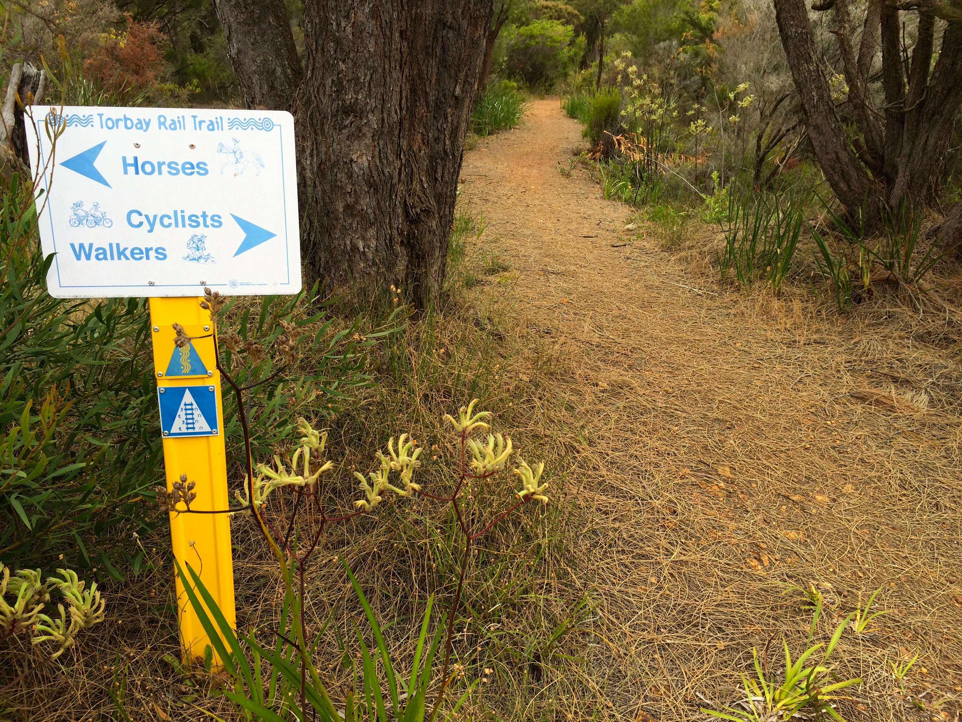 Torbay Rail Trail - easy to understand
