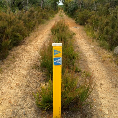 Torbay Rail Trail - means keep straight on