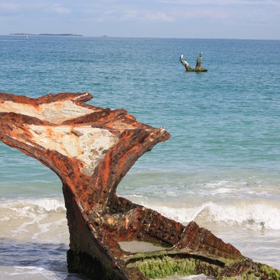 Tony Jones Statue and Wyola wreck, O'Connor Beach