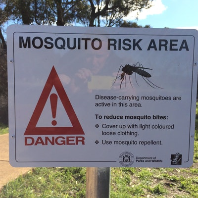 Mosquito warning near Bunbury