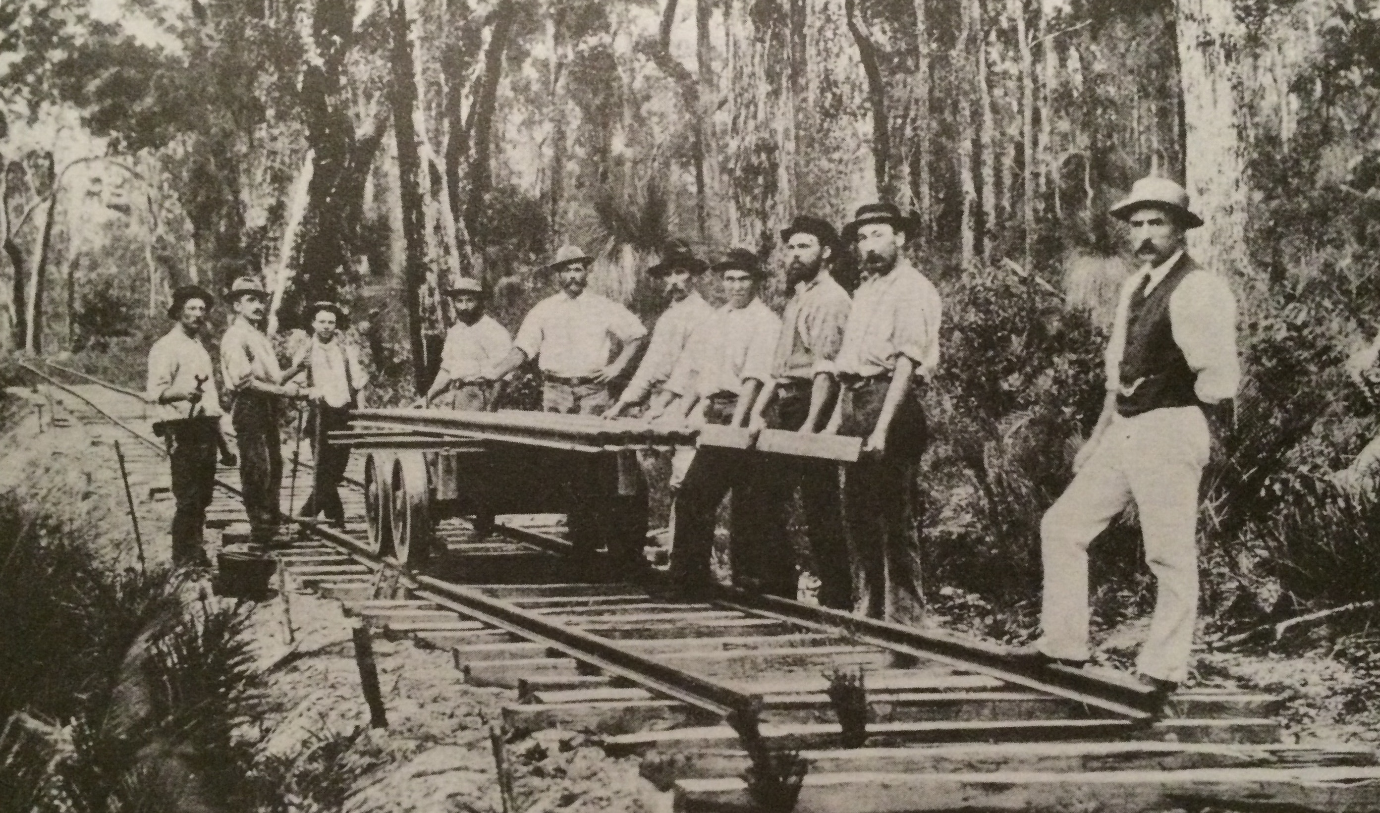 Laying line in Karridale in early 1900's