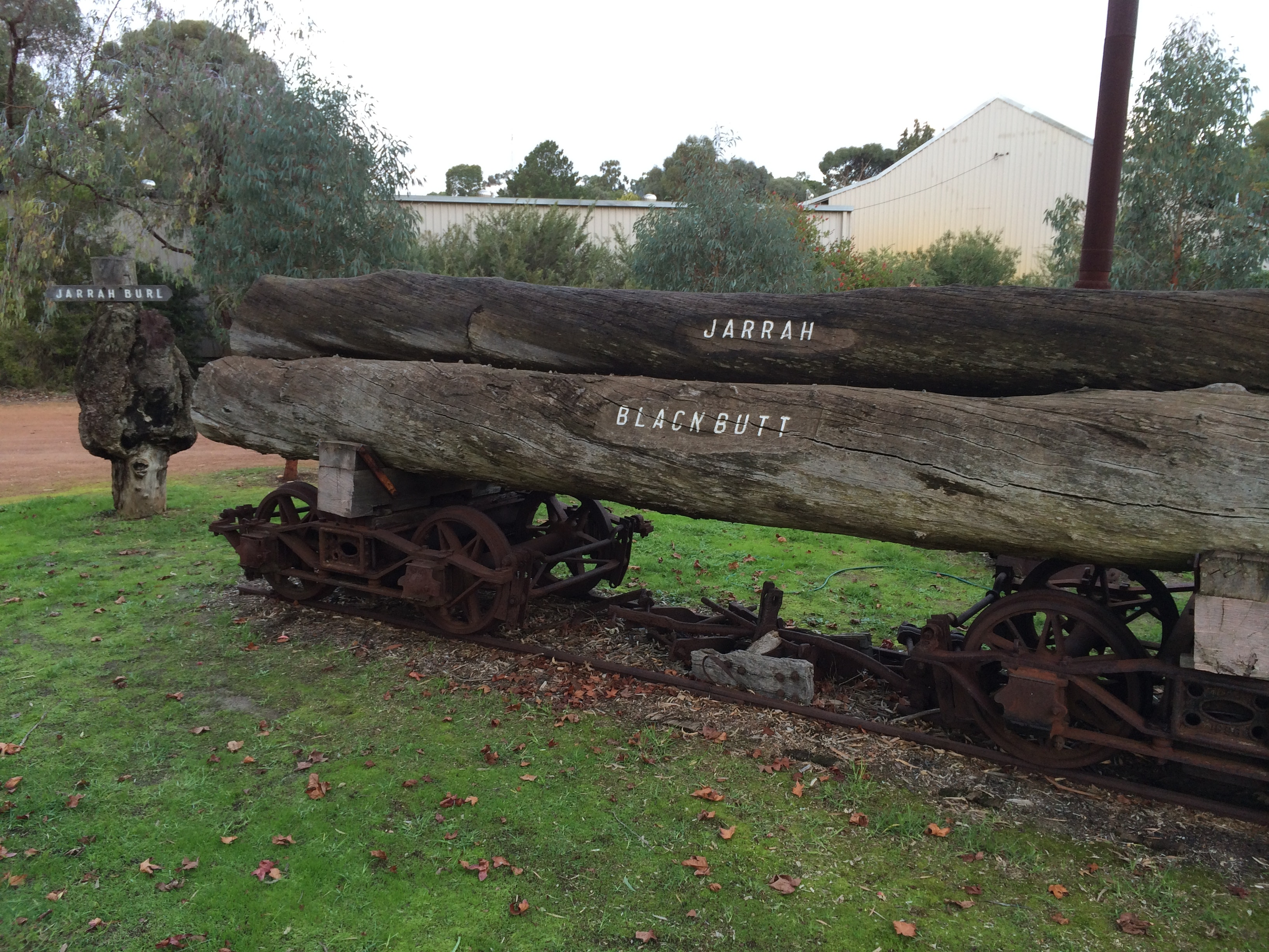 Logs, Donnybrook