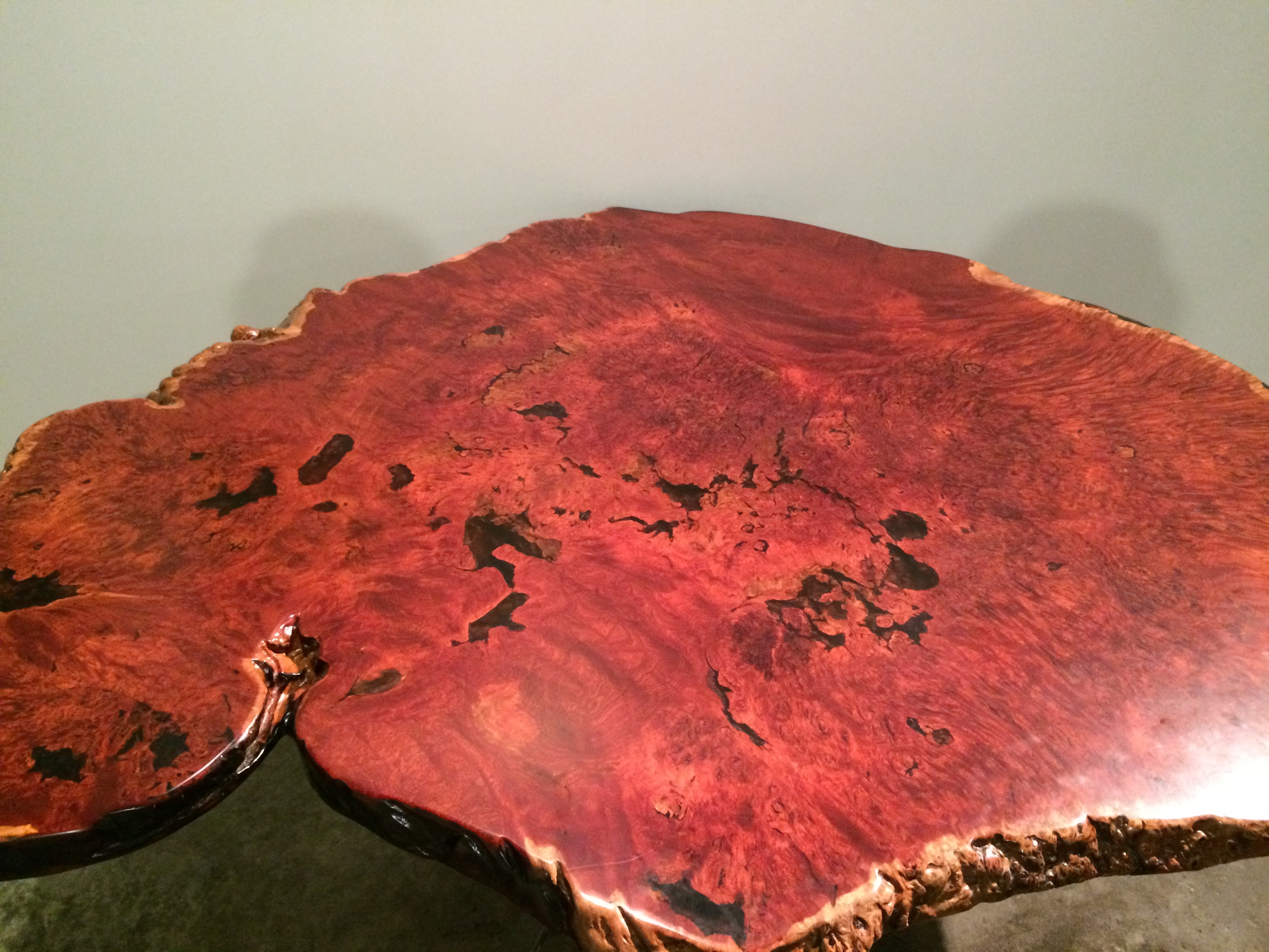Polished Jarrah burl