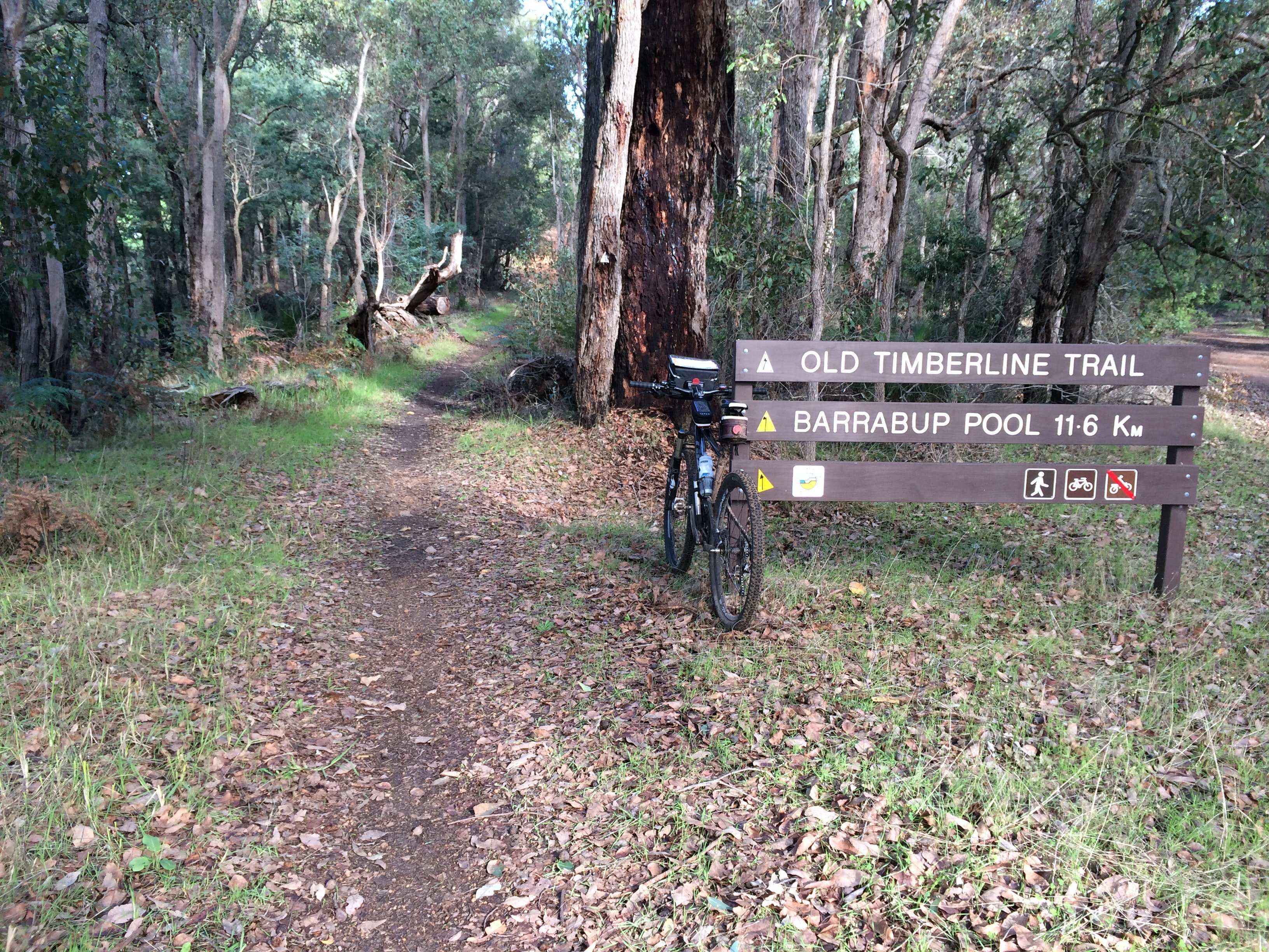 Old Timberline Trail marker near Nannup