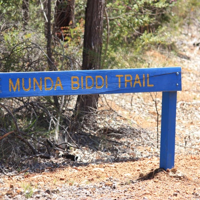 Munda Biddi sign on Del Park Rd (Map 2)