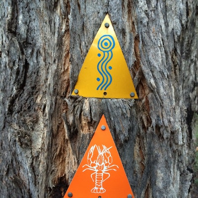 Old style MB and Waterous Loop markers on a tree