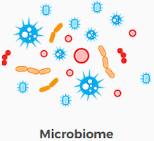 microbiome.png