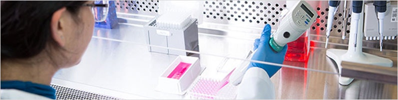 topbanner-transfection.jpg